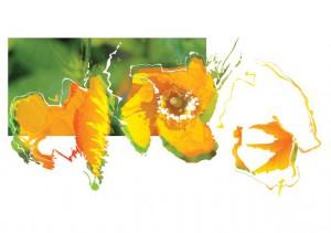 LAS010 HR WTK kunstkaart 1313